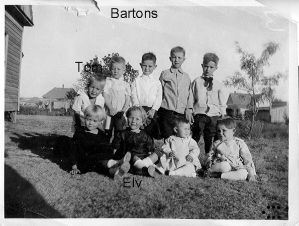 bunch Bartons